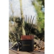 Knose Diffusore Ambiente Woody Woody